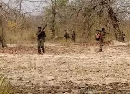 janasanchar , भारतको छात्तिसगढ़मा माओवादी आक्रमण , मोइस्त attack